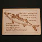 Mackerel Postcard
